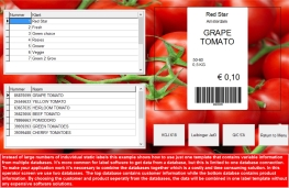 Food industry labeling form with several databases driving direct marking printers
